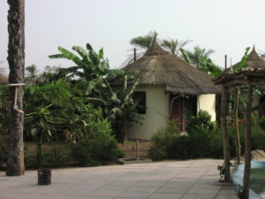 Mature plants around hut
