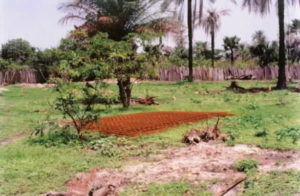 Land at start with reinforcing mesh for floor slabs.